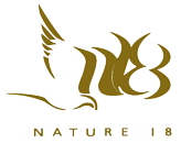 logo-Nature18-Marron-fond-transparent.png