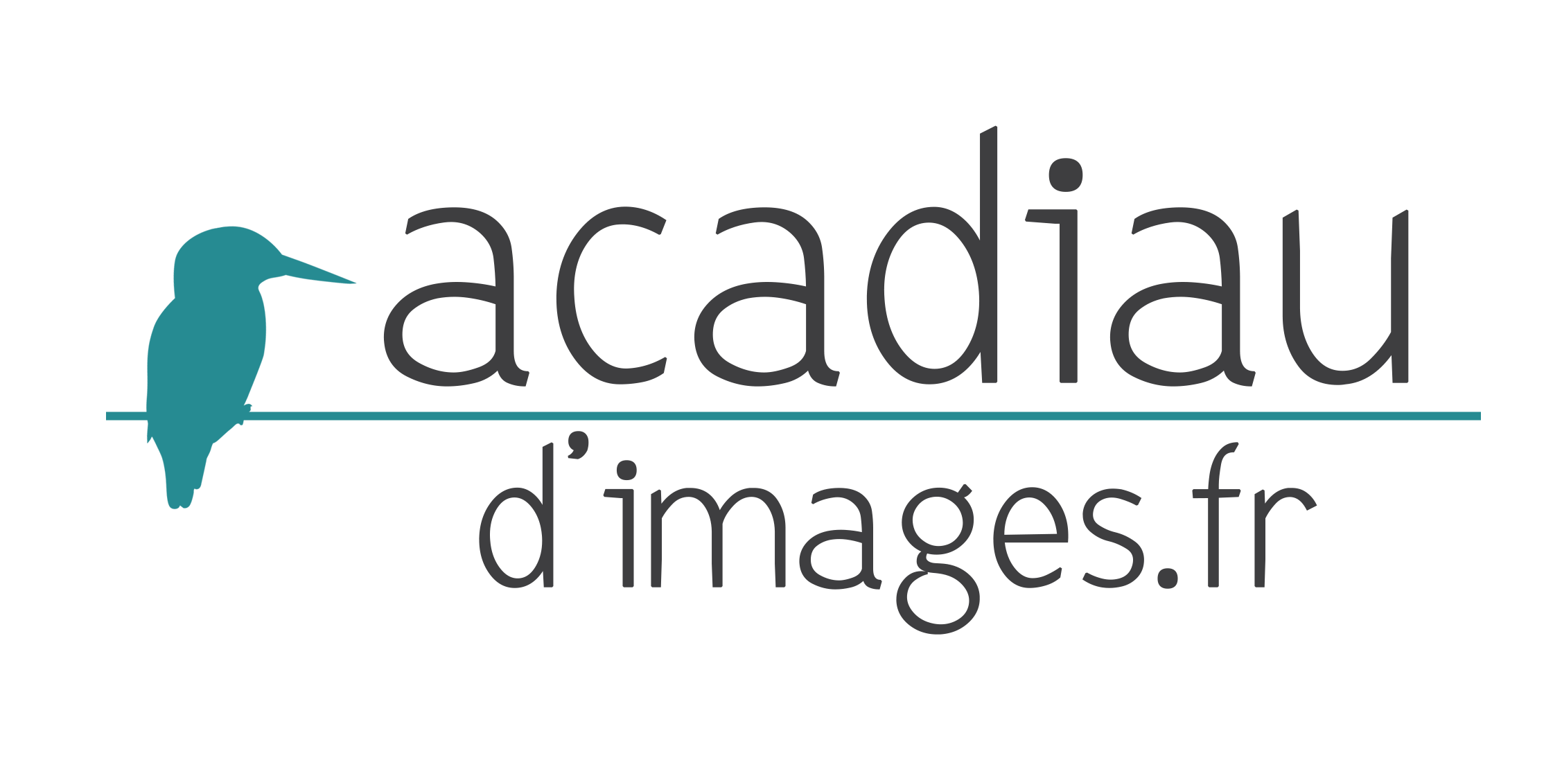 logo-acadiaudimages-alexandre-roubalay-photos-nature.png